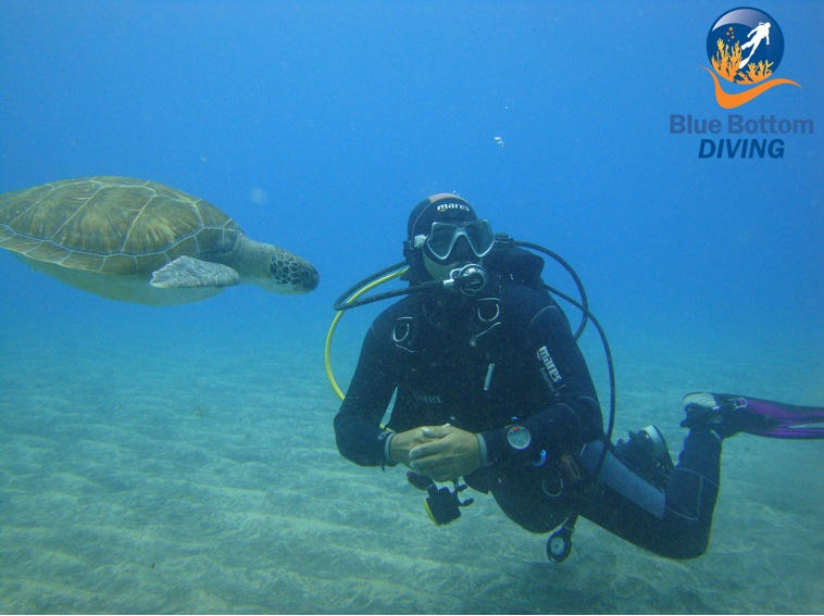 Buceo BlueBottomDiving Tenerife
