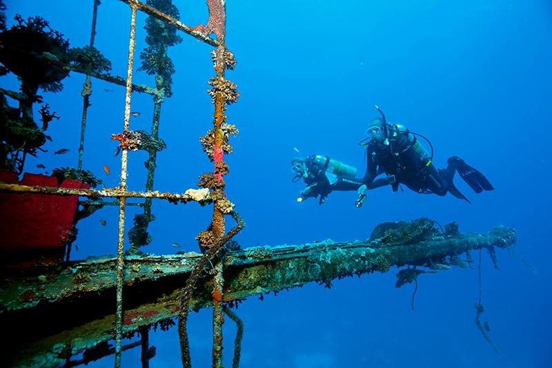 Curso de Fotografia bajo el mar